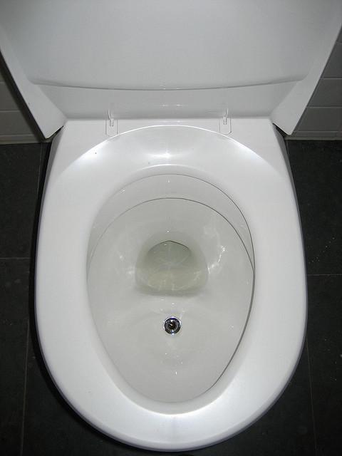 urine-diverting-toilet