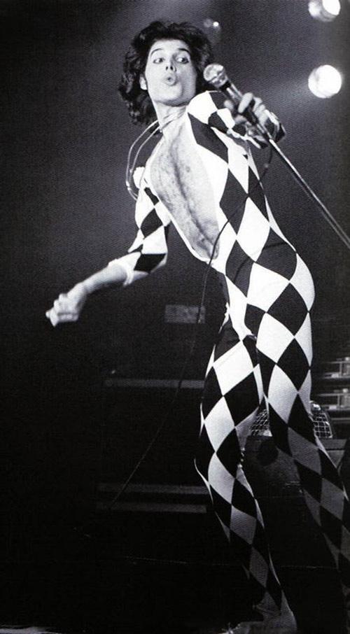 Leggings-Freddie500