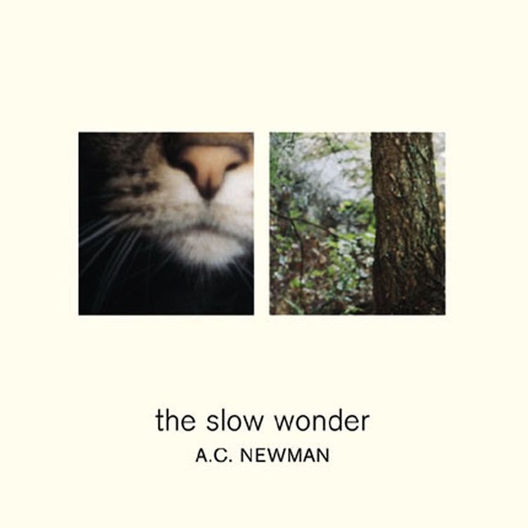 slow_wonder_cover