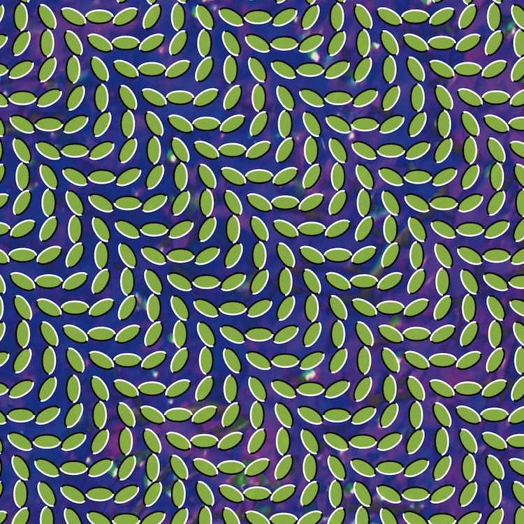 animal collective merriweather