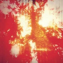 odonis-odonis-hard-boiled-album-cover-press-300