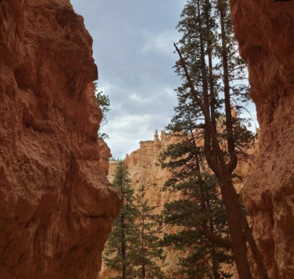Wall Street Bryce Canyon